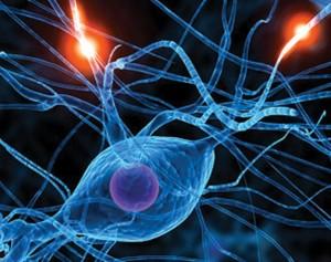 New Horizon in Alzheimers Disease