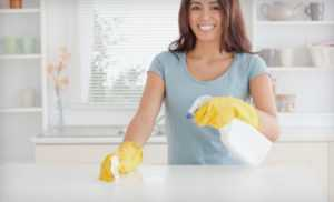 Your Clean Home is Our Business