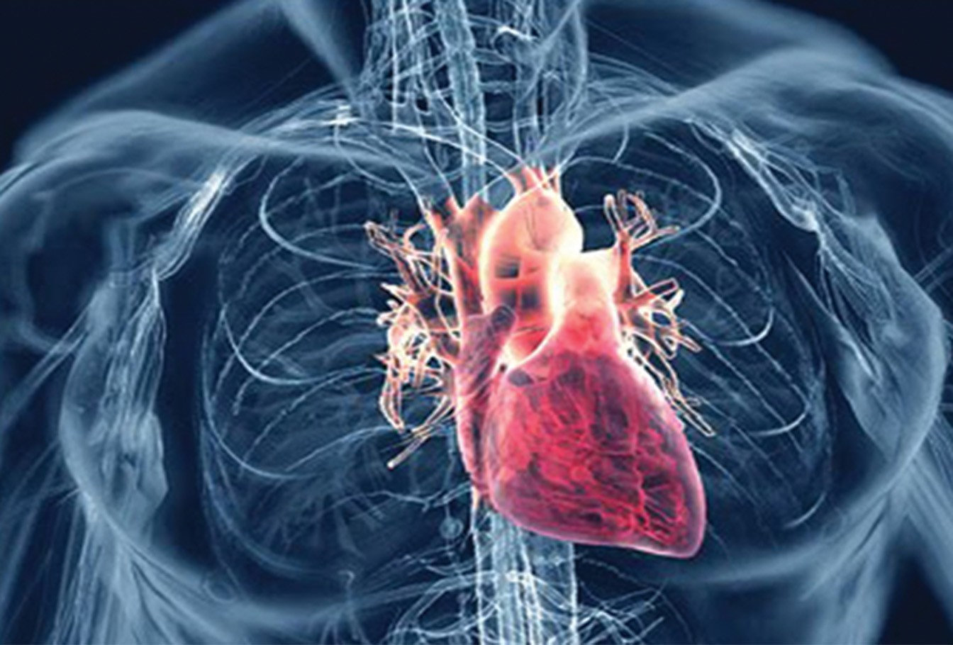 Photo of Knowing the Signs and Symptoms of Heart Disease