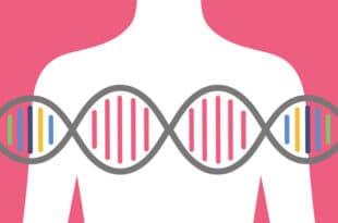 Understanding BRCA Genes