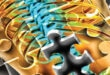 The Lumbar Spine Puzzle: Interventional Pain Management