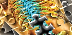 The Lumbar Spine Puzzle