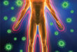What You Need to Know About Your IMMUNE SYSTEM